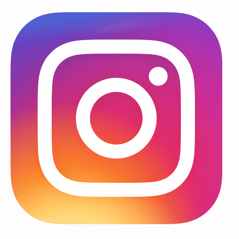 Instagram Logo Neutral Background